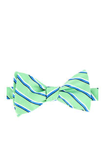 Idaho Stripe Bow Tie