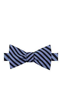 Charlotte Stripe Bow Tie