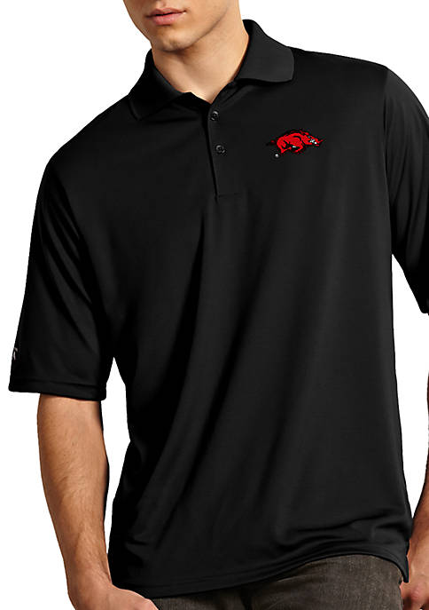 Arkansas Razorbacks Exceed Polo