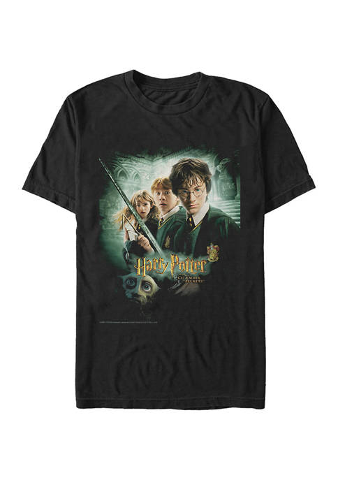Harry Potter™ Harry Potter Chamber Group Poster Graphic