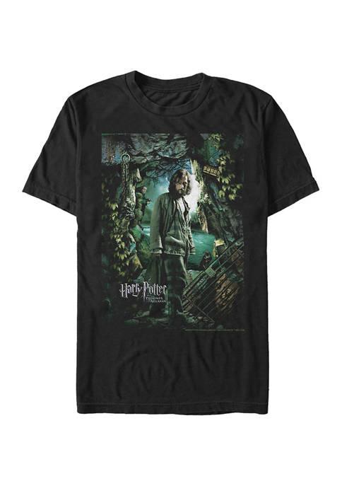 Harry Potter™ Harry Potter Sirius Azkaban Poster Graphic