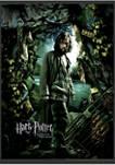 Harry Potter Sirius Azkaban Poster Graphic T-Shirt
