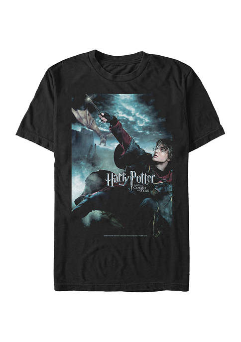 Harry Potter™ Harry Potter Harrys First Task Graphic