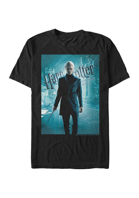 Harry Potter™ Harry Potter Half-Blood Draco Poster Graphic