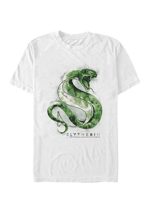Harry Potter™ Harry Potter Slytherin Mystic Wash Graphic