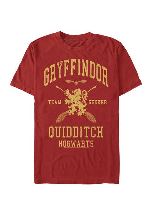 Harry Potter™ Harry Potter Gryffindor Quidditch Seeker Graphic