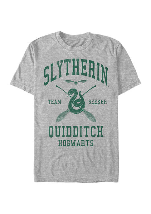 Harry Potter™ Harry Potter Slytherin Quidditch Seeker Graphic