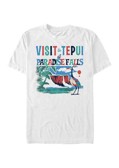 Disney® Pixar™ Up Tepui at Paradise Falls Short