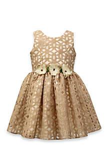 Jayne Copeland Floral Burnout Dress-Toddler Girls