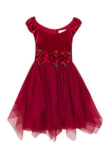 Toddler Girls Rose Waist Social Dress