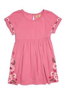 Toddler Girls Short Sleeve Embroidered Swing Dress