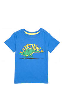 Toddler Boys Short Sleeve Birthday Graphic Tee