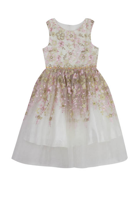 Rare Editions Girls 4-6x Sleeveless Embroidered Dress