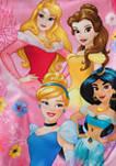 Girls 4-6x Princess One Piece Swimsuit