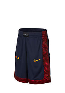 Boys 8-20 Dry LeBron Shorts