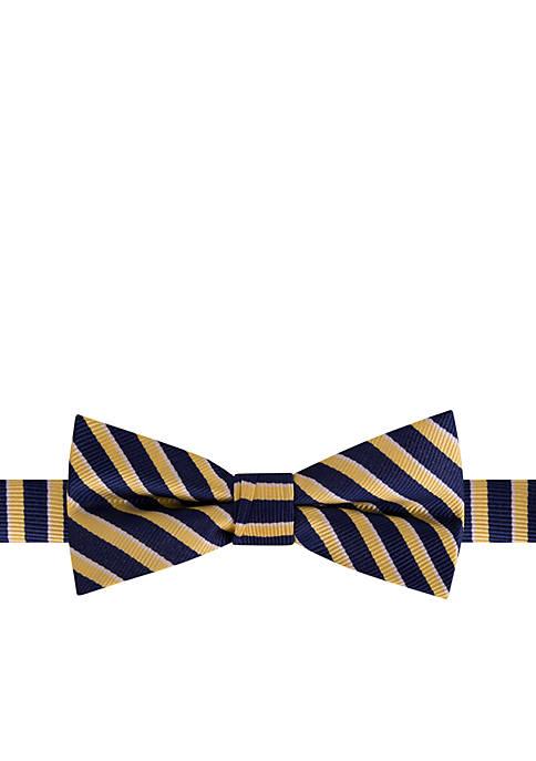 Crown & Ivy™ Boys CIB Prep Stripe Tie