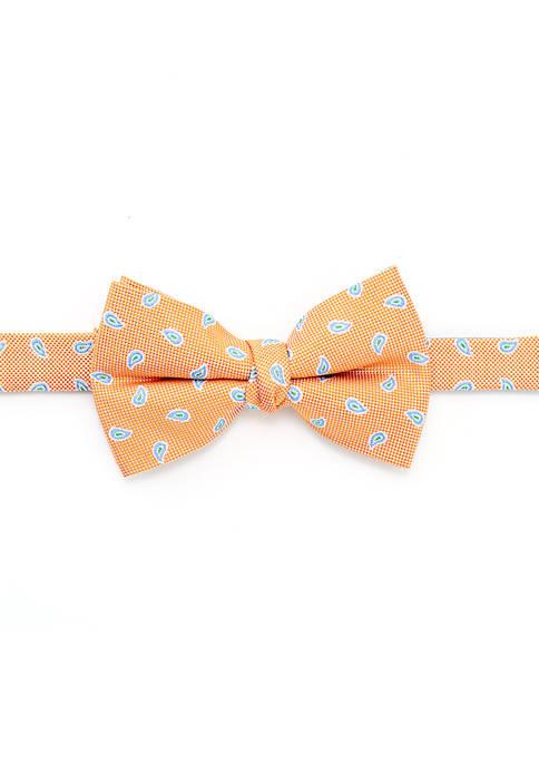 Boys 8-20 Mini Paisley Bow Tie