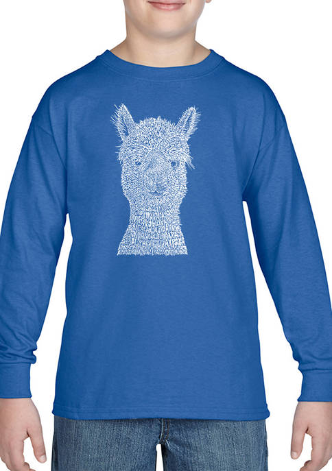 Boys 8-20 Word Art Long Sleeve Graphic T-Shirt - Alpaca