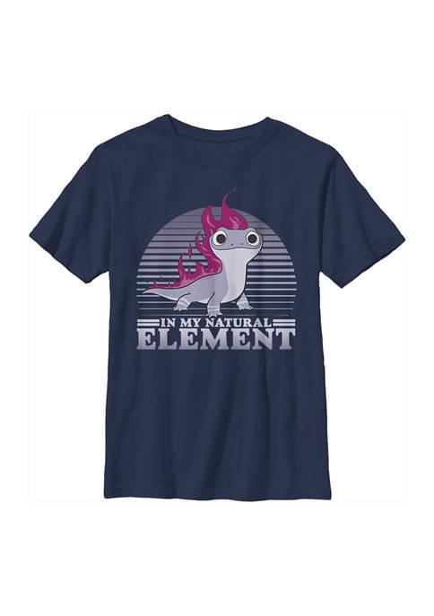 Boys 4-7 Frozen Element Flames Graphic T-Shirt