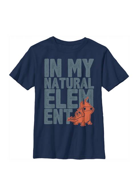 Boys 4-7 Frozen Element Block Graphic T-Shirt