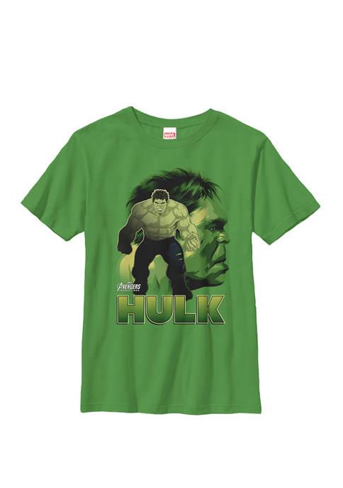 Boys 8-20 Infinity War Hulk Big Head Profile