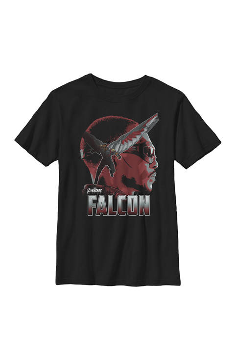 Boys 8-20 Infinity War Falcon Big Head Profile