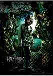 Boys 4-7  Sirius Azkaban Poster Graphic T-Shirt