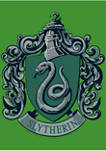 Boys 4-7  Slytherin House Crest Graphic T-Shirt