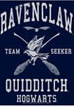 Boys 4-7  Ravenclaw Quidditch Seeker Graphic T-Shirt