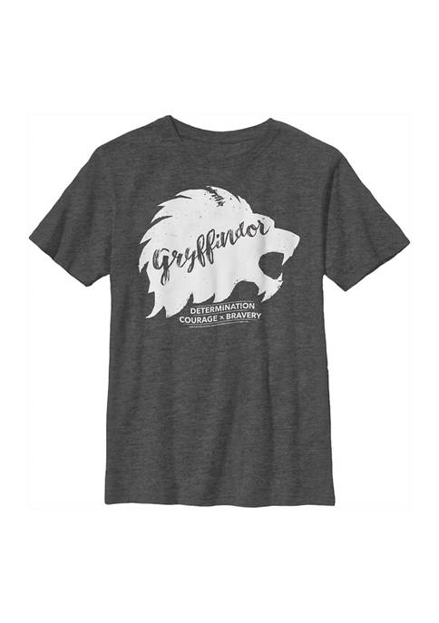Harry Potter™ Boys 4-7 Determination Courage Bravery Graphic
