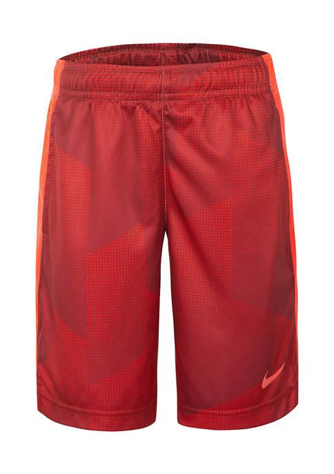 Nike® Boys 4-7 GFX Legacy Shorts