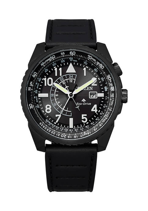 Citizen Eco-Drive Leather Stainless Steel Watch