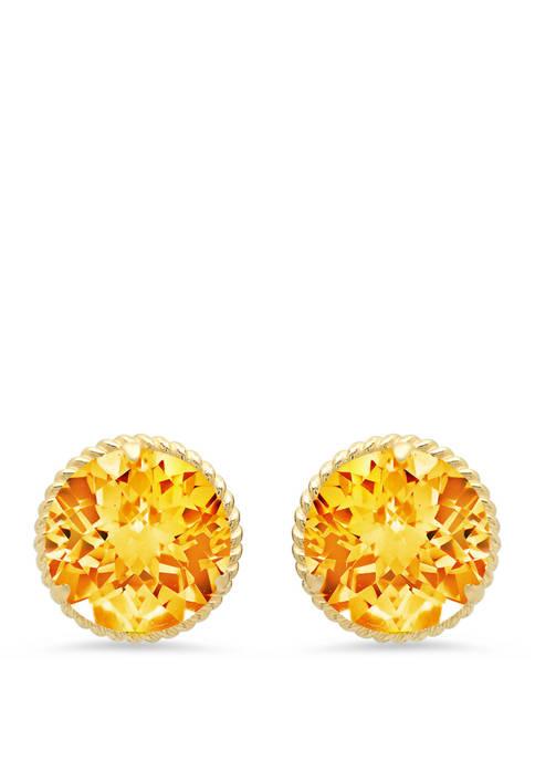 Belk & Co. Citrine Stud Earrings