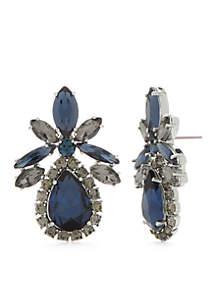 Multi Crystal Statement Stud Earrings