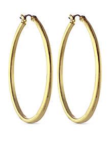 Oval Hoop Earrings