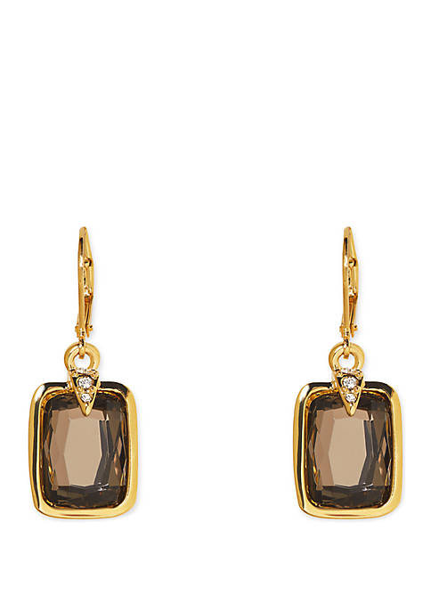 Vince Camuto Desert Oasis Eurowire Earrings