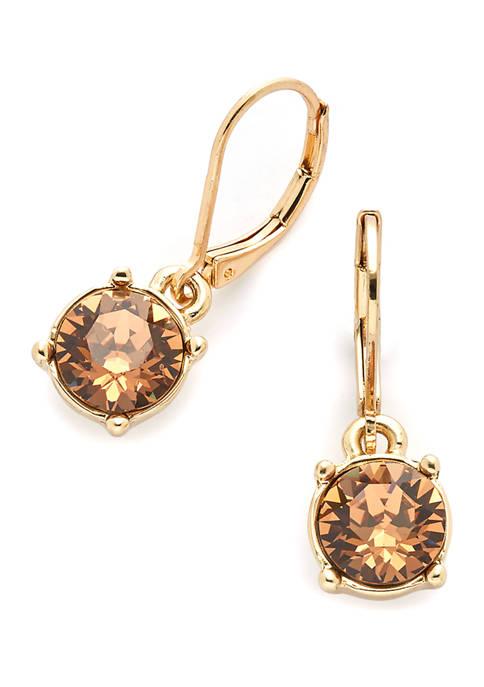 Gold Tone Lever Back Swarovski Drop Earrings