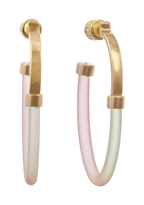 Gold Tone and Multi Colored Resin Post Hoop Earrings