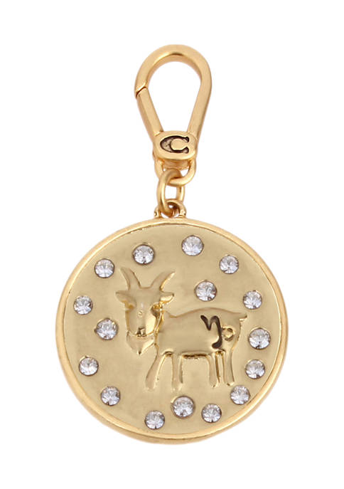 Capricorn Crystals Zodiac Charm