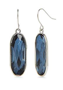 Single Oval Drop Earrings
