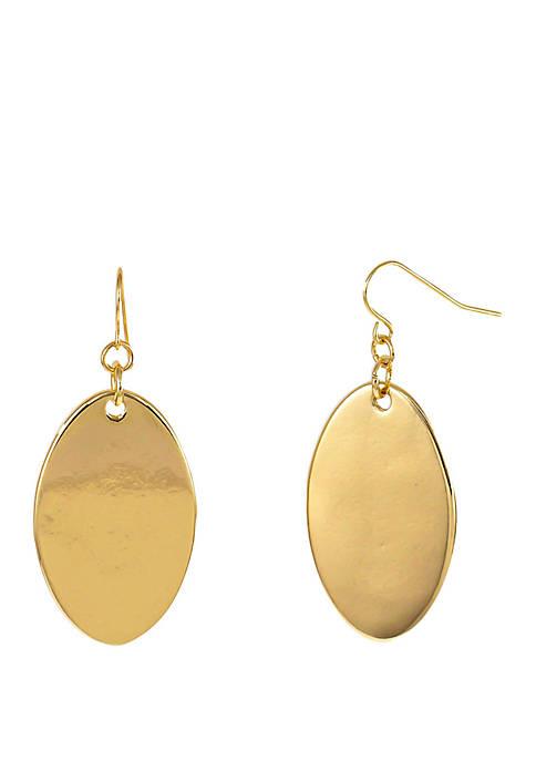 Shiny Oval Disc Drop Earrings