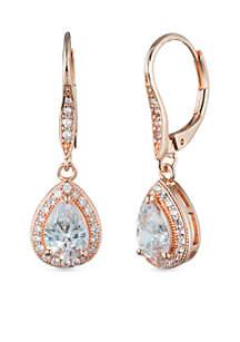 Anne Klein Lever Back Drop Earrings