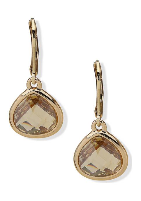 Gold Tone Crystal Golden Shadow Drop Earrings