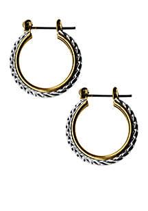 Two-Tone Sensitive Skin Rope Hoop Earrings