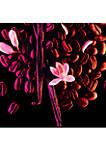 Black Opium Click & Go