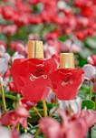 So Sweet Eau de Parfum Spray