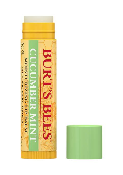 Burt's Bees Lip Balm Cucumber Mint