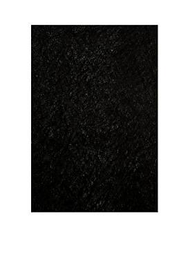 Luster Shag Solid Black Area Rug 2 x 3