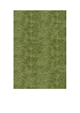 Luster Shag Solid Apple Green Area Rug 3 x 5