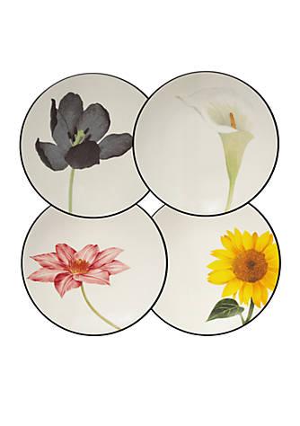 Noritake Colorwave Graphite Set of 4 Floral Appetizer Plates | belk